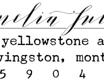 Livingston custom return address stamp - Bella Grafia Calligraphy